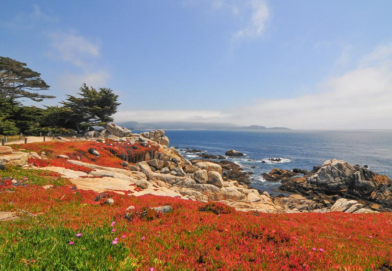 Pebble Beach In Carmel By The Sea, California